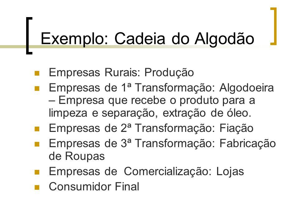 Exemplo: Cadeia do Algodão Empresas Rurais: Produção Empresas de 1ª Transformação: Algodoeira – Empresa que recebe o produto para a limpeza e separaçã