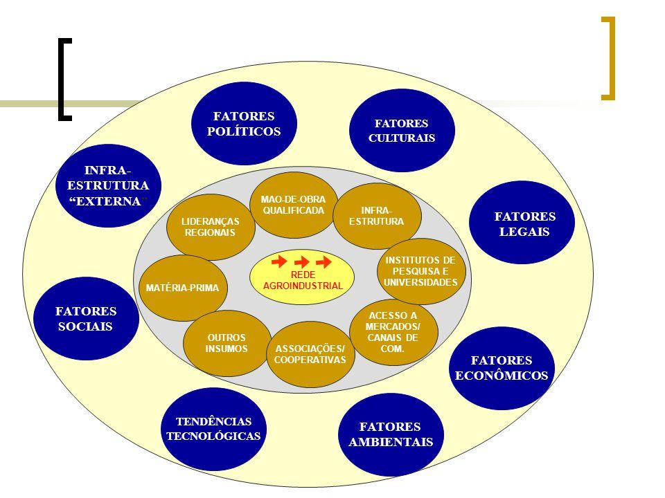 REDE AGROINDUSTRIAL LIDERANÇAS REGIONAIS MAO-DE-OBRA QUALIFICADA INFRA- ESTRUTURA MATÉRIA-PRIMA OUTROS INSUMOS ASSOCIAÇÕES/ COOPERATIVAS ACESSO A MERC