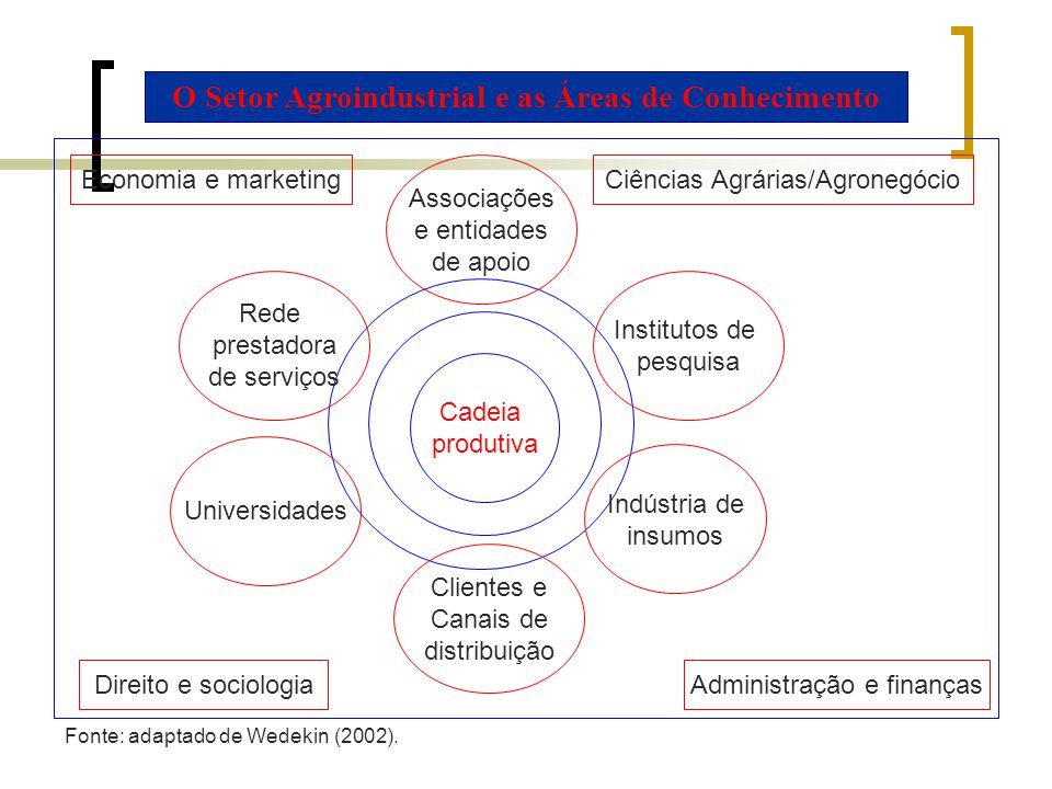 O Setor Agroindustrial e as Áreas de Conhecimento Direito e sociologia Economia e marketing Administração e finanças Ciências Agrárias/Agronegócio Cad