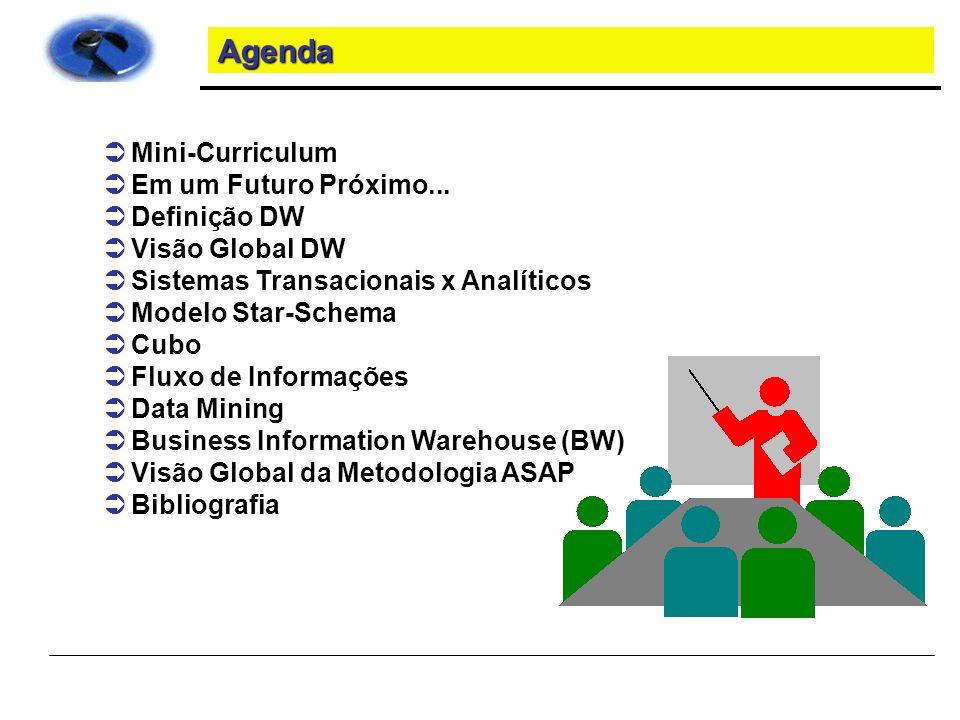 Organização de um Projeto Equipe BW Power Users Analistas funcionais do OLTP Suporte Técnico Analistas Técnicos do OLTP Data Architect BW Coordenador Projeto Comitê de Validação Comitê Executivo Patrocinador Projeto BW Coordenador Tecnologia Sistema Fonte
