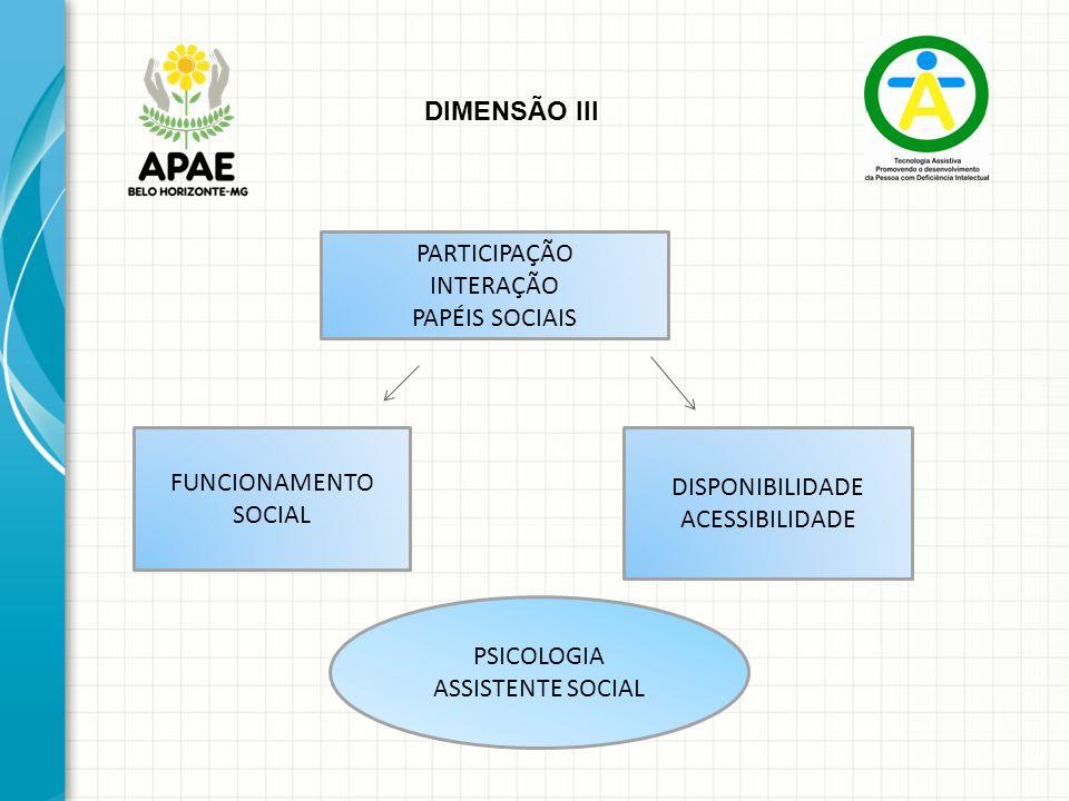 PARTICIPAÇÃO INTERAÇÃO PAPÉIS SOCIAIS DIMENSÃO III FUNCIONAMENTO SOCIAL DISPONIBILIDADE ACESSIBILIDADE PSICOLOGIA ASSISTENTE SOCIAL