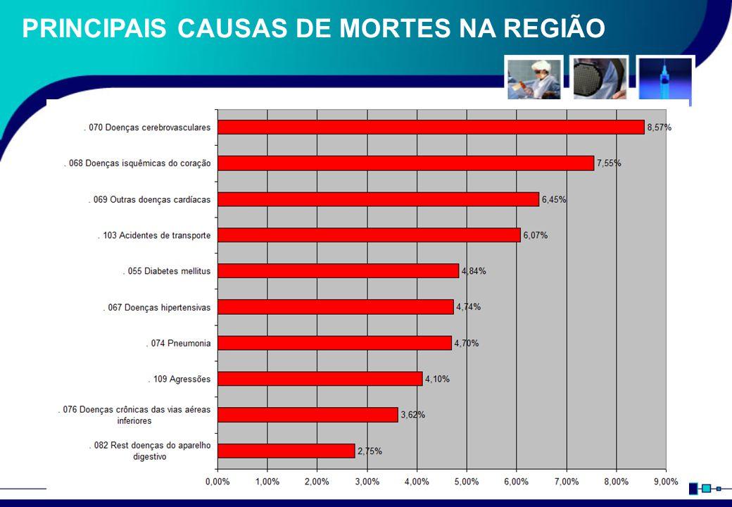 PRINCIPAIS CAUSAS DE MORTES NA REGIÃO