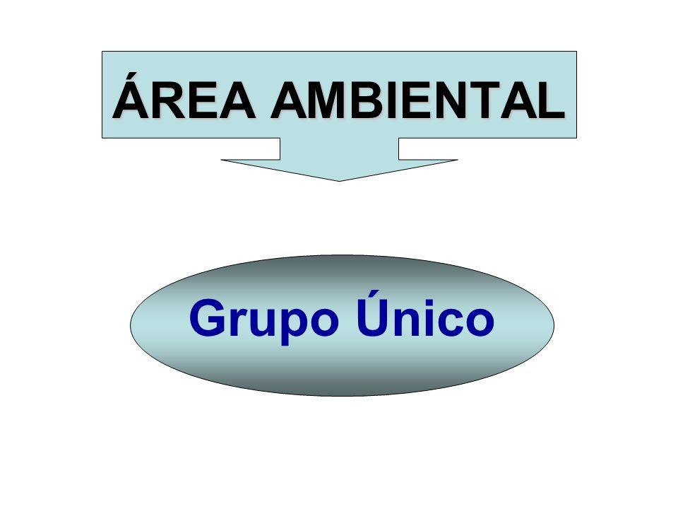 ÁREA AMBIENTAL Grupo Único