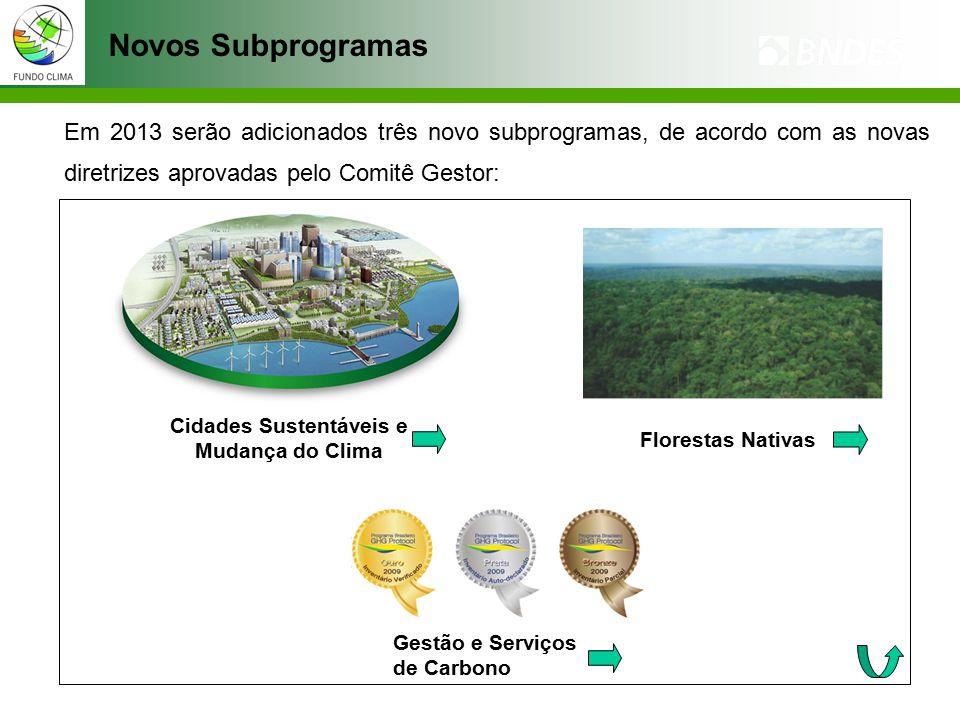 Novos Subprogramas Em 2013 serão adicionados três novo subprogramas, de acordo com as novas diretrizes aprovadas pelo Comitê Gestor: Gestão e Serviços de Carbono Cidades Sustentáveis e Mudança do Clima Florestas Nativas