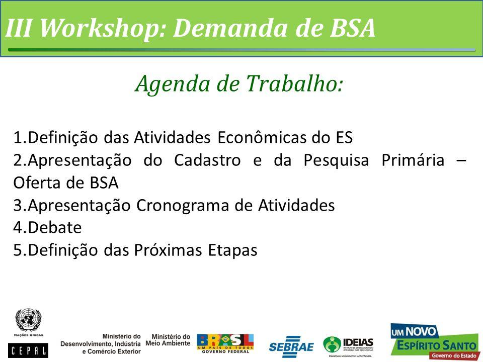 III Workshop: Demanda de BSA Agenda de Trabalho: 1.Definição das Atividades Econômicas do ES 2.Apresentação do Cadastro e da Pesquisa Primária – Oferta de BSA 3.Apresentação Cronograma de Atividades 4.Debate 5.Definição das Próximas Etapas