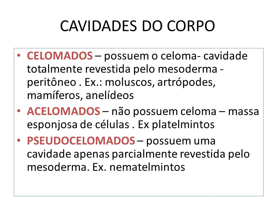 CAVIDADES DO CORPO CELOMADOS – possuem o celoma- cavidade totalmente revestida pelo mesoderma - peritôneo. Ex.: moluscos, artrópodes, mamíferos, anelí