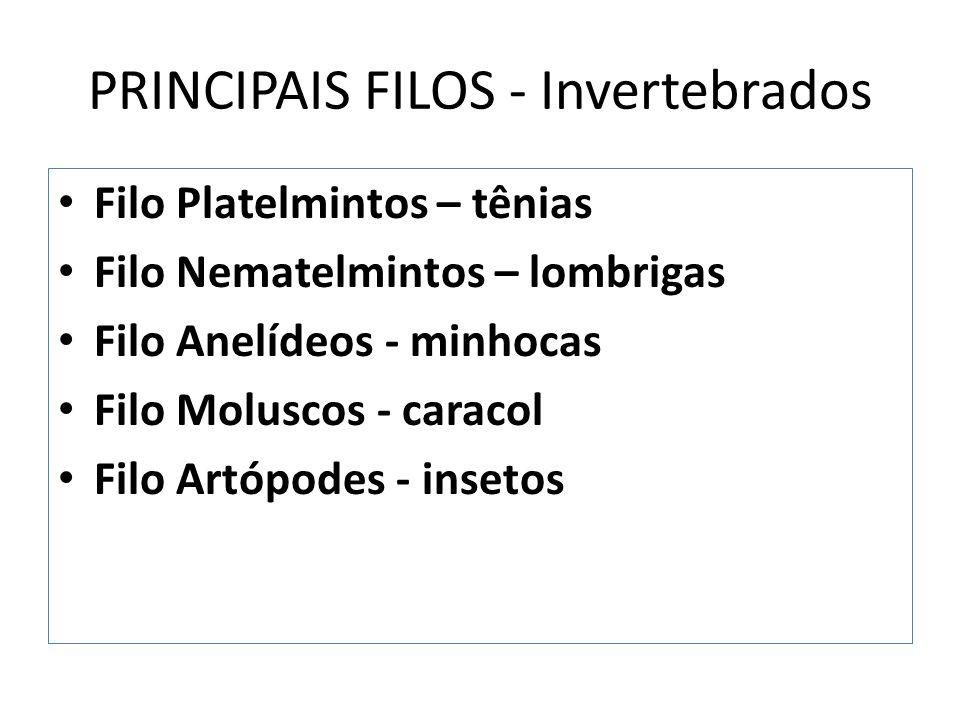PRINCIPAIS FILOS - Invertebrados Filo Platelmintos – tênias Filo Nematelmintos – lombrigas Filo Anelídeos - minhocas Filo Moluscos - caracol Filo Artópodes - insetos