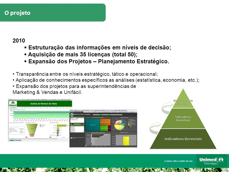 O projeto 2010  Estruturação das informações em níveis de decisão;  Aquisição de mais 35 licenças (total 50);  Expansão dos Projetos – Planejamento