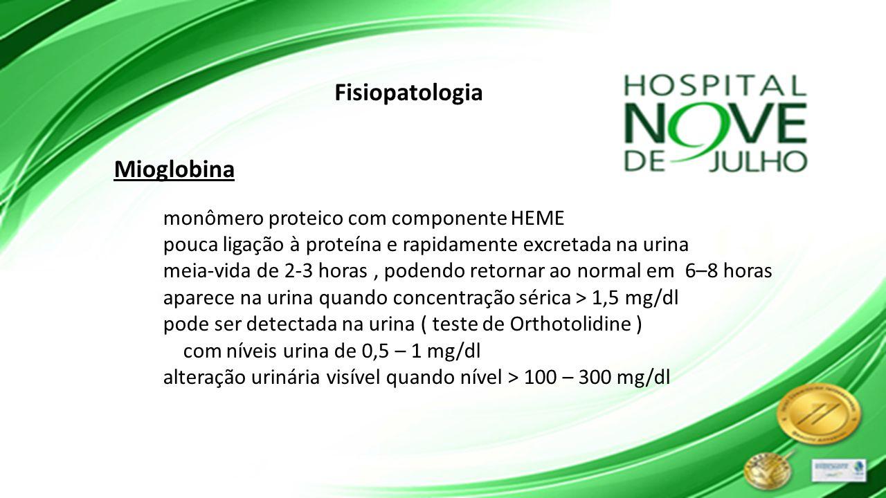 Fisiopatologia Mioglobina monômero proteico com componente HEME pouca ligação à proteína e rapidamente excretada na urina meia-vida de 2-3 horas, pode
