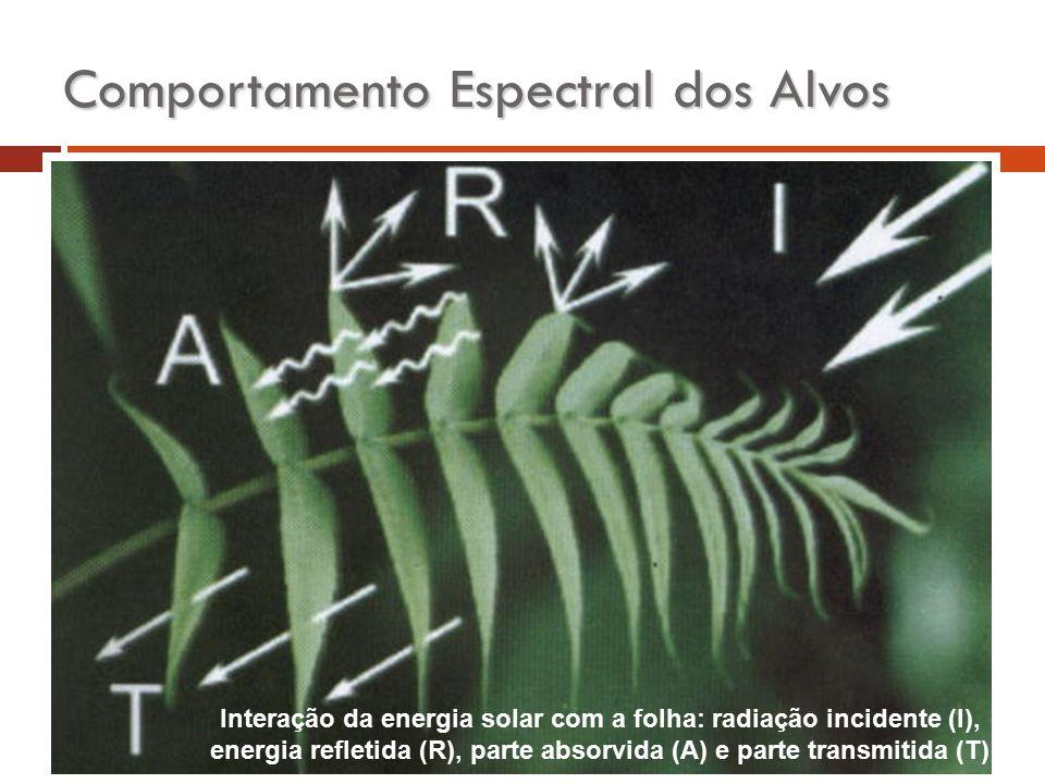 Comportamento Espectral dos Alvos Interação da energia solar com a folha: radiação incidente (I), energia refletida (R), parte absorvida (A) e parte t