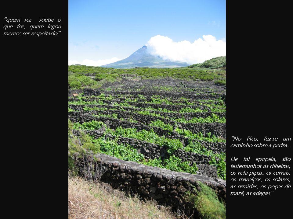 quem fez soube o que fez, quem legou merece ser respeitado No Pico, fez-se um caminho sobre a pedra.