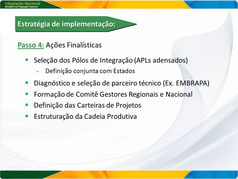 Passo 4: Ações Finalísticas  Seleção dos Pólos de Integração (APLs adensados) - Definição conjunta com Estados  Diagnóstico e seleção de parceiro técnico (Ex.