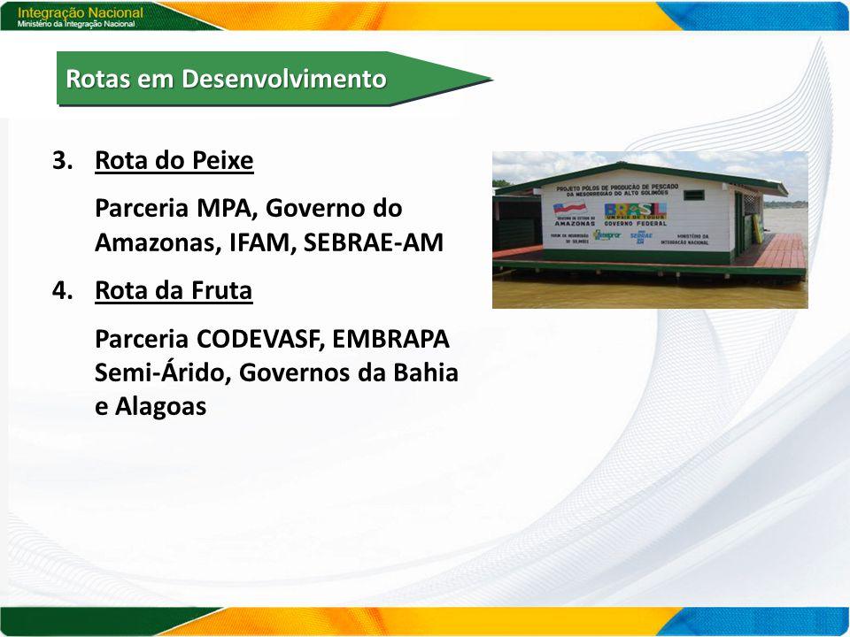 3.Rota do Peixe Parceria MPA, Governo do Amazonas, IFAM, SEBRAE-AM 4.Rota da Fruta Parceria CODEVASF, EMBRAPA Semi-Árido, Governos da Bahia e Alagoas Rotas em Desenvolvimento