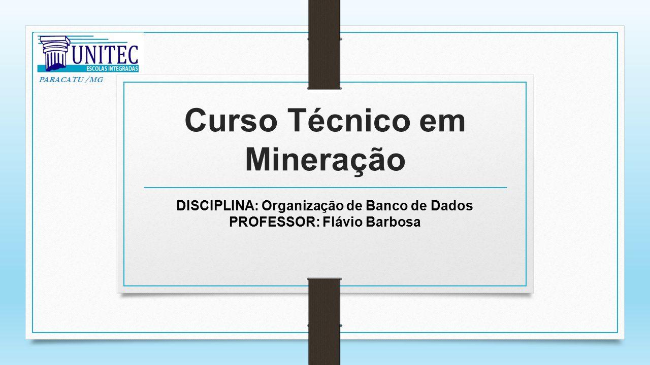 Curso Técnico em Mineração DISCIPLINA: Organização de Banco de Dados PROFESSOR: Flávio Barbosa PARACATU /MG