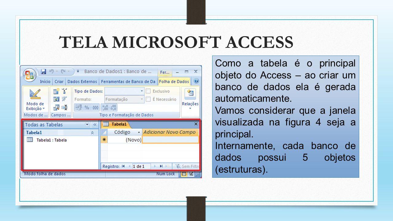 TELA MICROSOFT ACCESS Como a tabela é o principal objeto do Access – ao criar um banco de dados ela é gerada automaticamente. Vamos considerar que a j