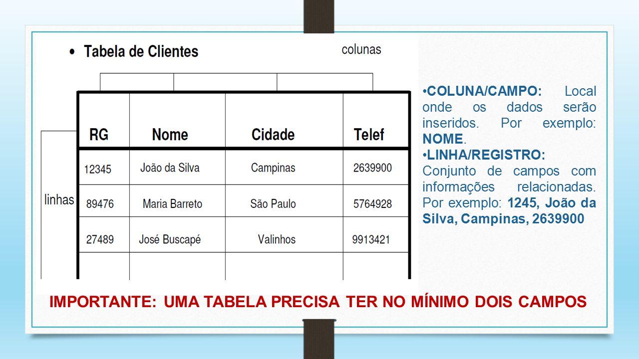 COLUNA/CAMPO: Local onde os dados serão inseridos. Por exemplo: NOME. LINHA/REGISTRO: Conjunto de campos com informações relacionadas. Por exemplo: 12