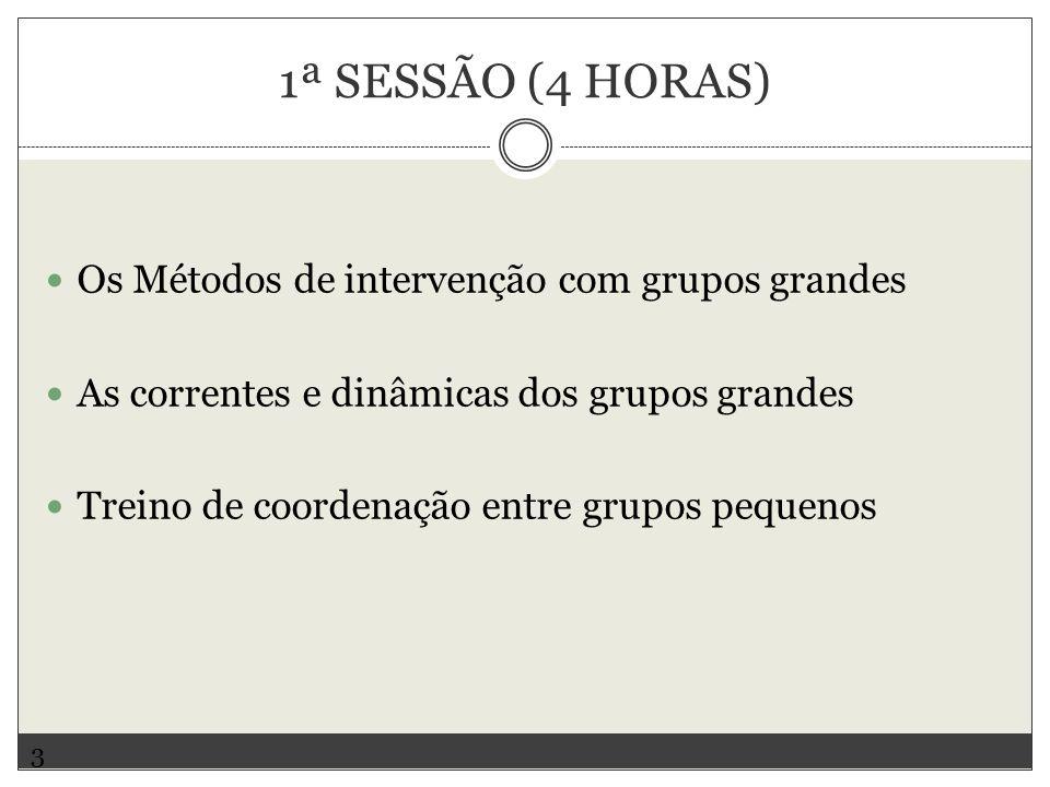 1ª SESSÃO (4 HORAS) Os Métodos de intervenção com grupos grandes As correntes e dinâmicas dos grupos grandes Treino de coordenação entre grupos pequenos 3