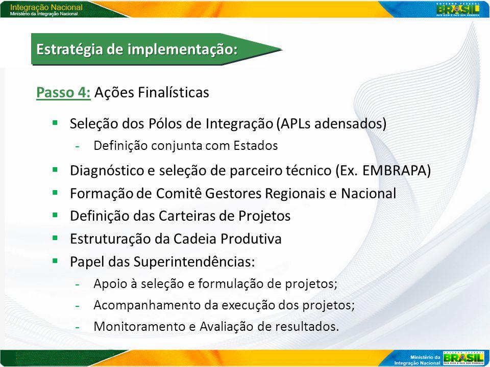 Passo 4: Ações Finalísticas  Seleção dos Pólos de Integração (APLs adensados) - Definição conjunta com Estados  Diagnóstico e seleção de parceiro té