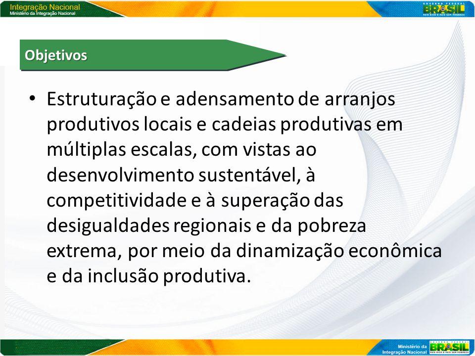 Estruturação e adensamento de arranjos produtivos locais e cadeias produtivas em múltiplas escalas, com vistas ao desenvolvimento sustentável, à compe