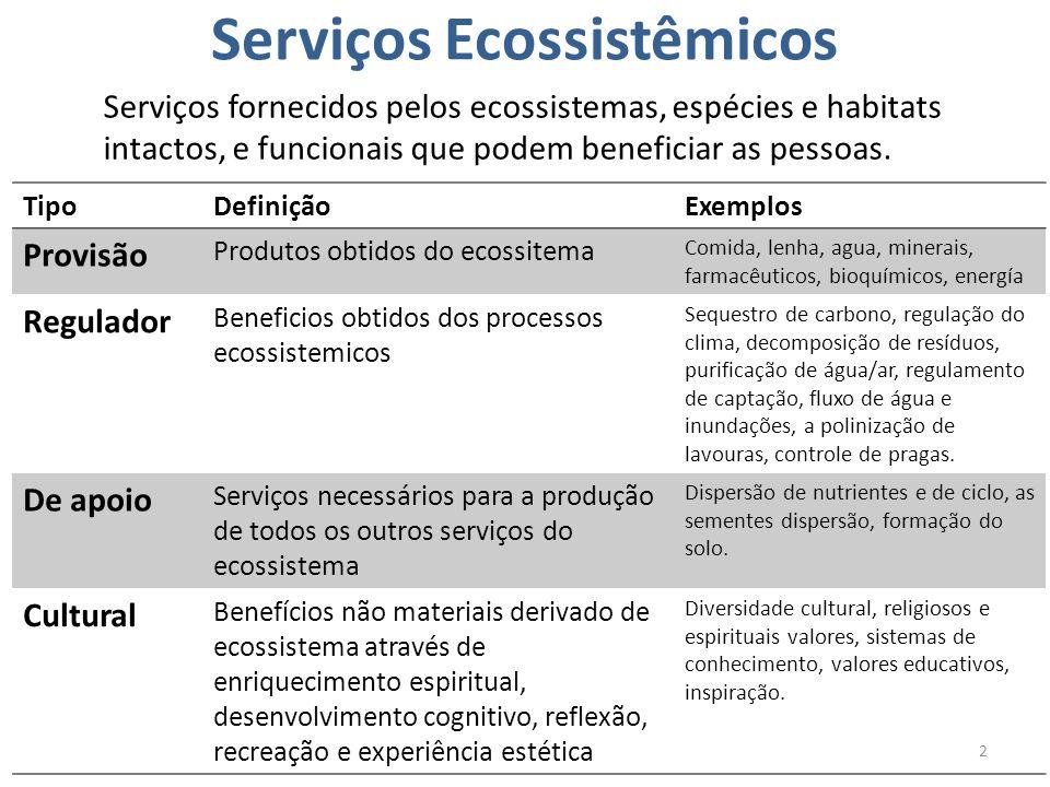 Serviços Ecossistêmicos Serviços fornecidos pelos ecossistemas, espécies e habitats intactos, e funcionais que podem beneficiar as pessoas. 2 TipoDefi