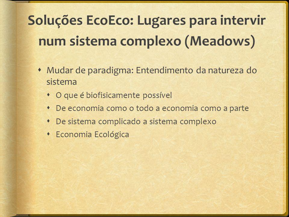 Soluções EcoEco: Lugares para intervir num sistema complexo (Meadows)  Mudar de paradigma: Entendimento da natureza do sistema  O que é biofisicamente possível  De economia como o todo a economia como a parte  De sistema complicado a sistema complexo  Economia Ecológica