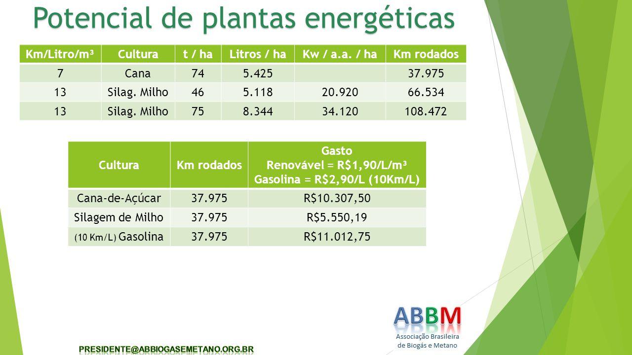 Potencial de plantas energéticas Km/Litro/m³Culturat / haLitros / haKw / a.a. / haKm rodados 7Cana745.42537.975 13Silag. Milho465.11820.92066.534 13Si