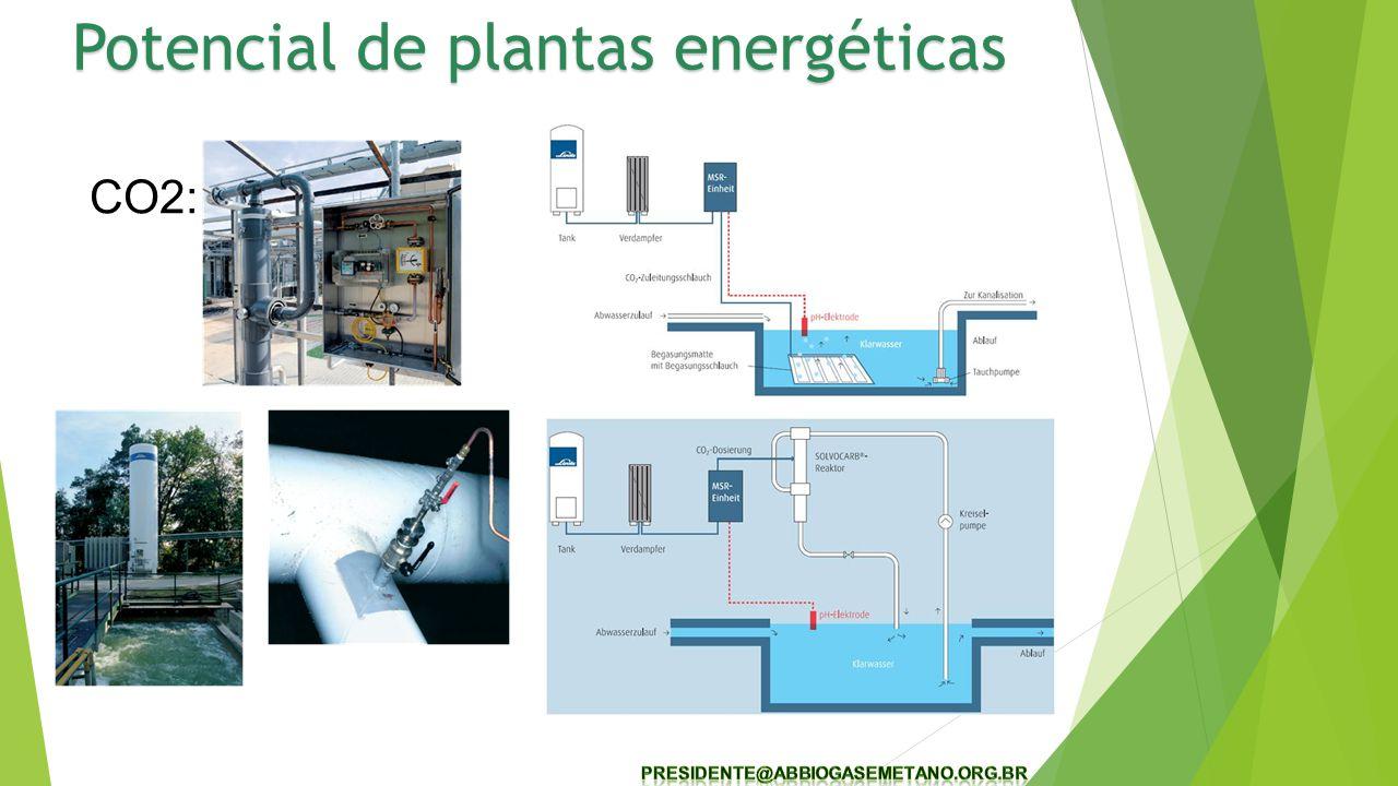 CO2: Potencial de plantas energéticas