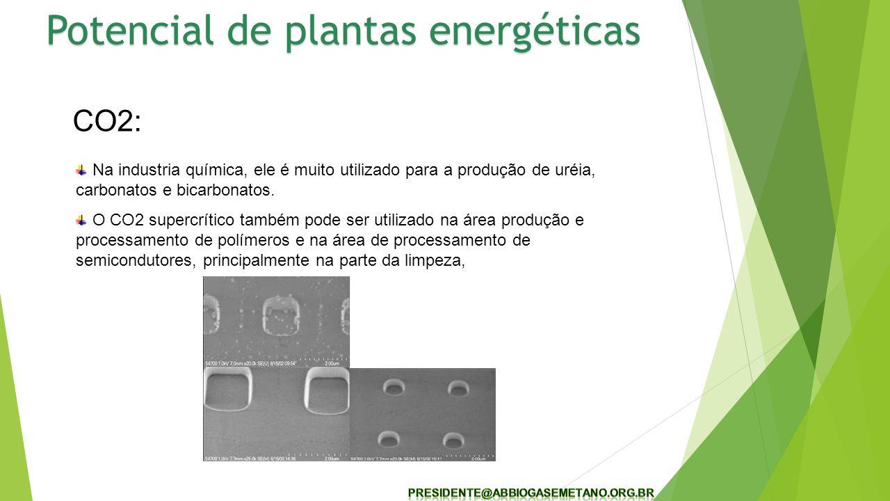 CO2: Na industria química, ele é muito utilizado para a produção de uréia, carbonatos e bicarbonatos. O CO2 supercrítico também pode ser utilizado na