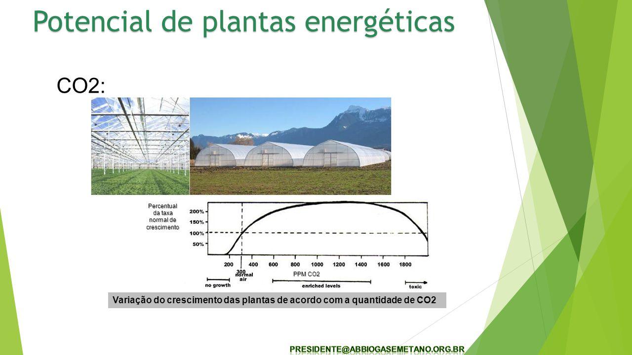 CO2: Variação do crescimento das plantas de acordo com a quantidade de CO2 PPM CO2 Percentual da taxa normal de crescimento Potencial de plantas energéticas