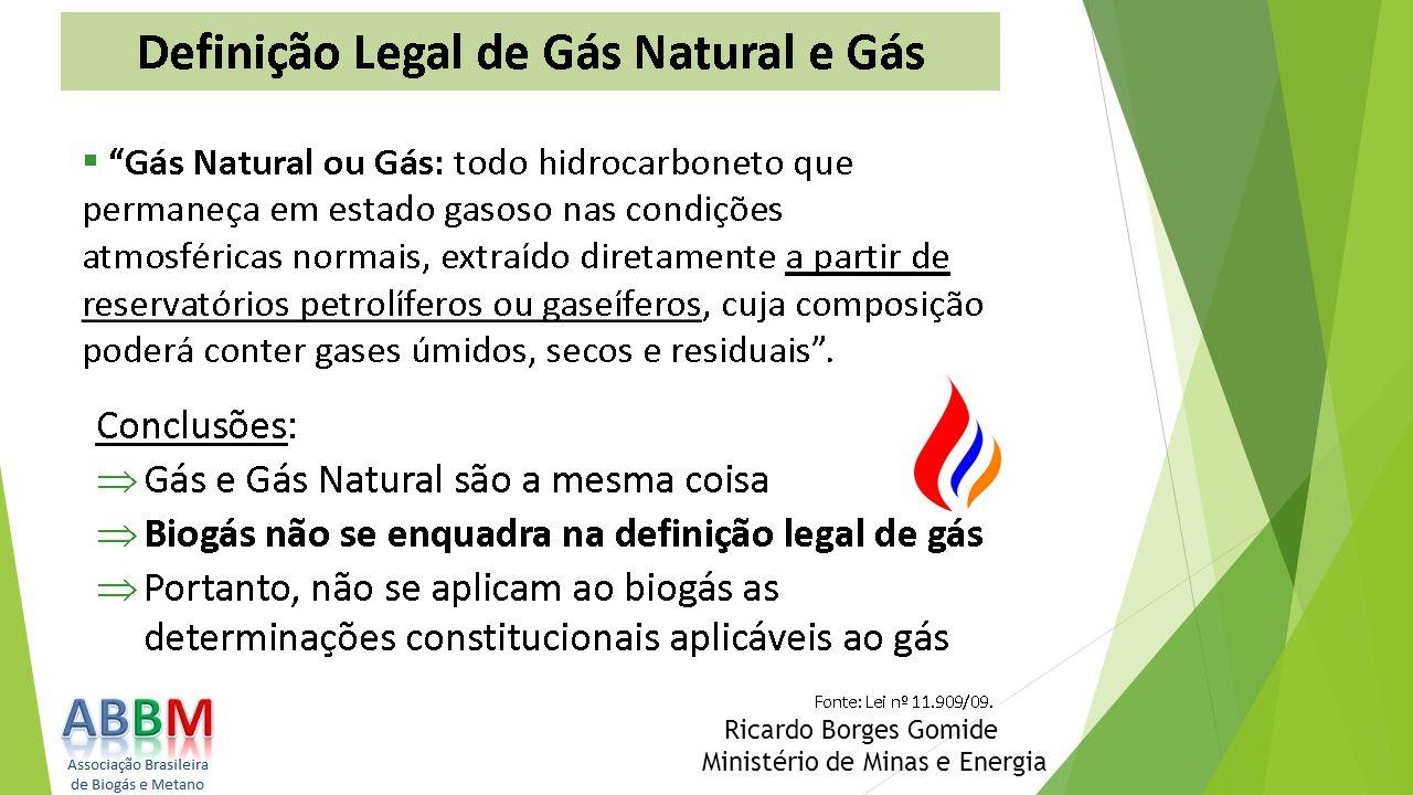Ricardo Borges Gomide Ministério de Minas e Energia