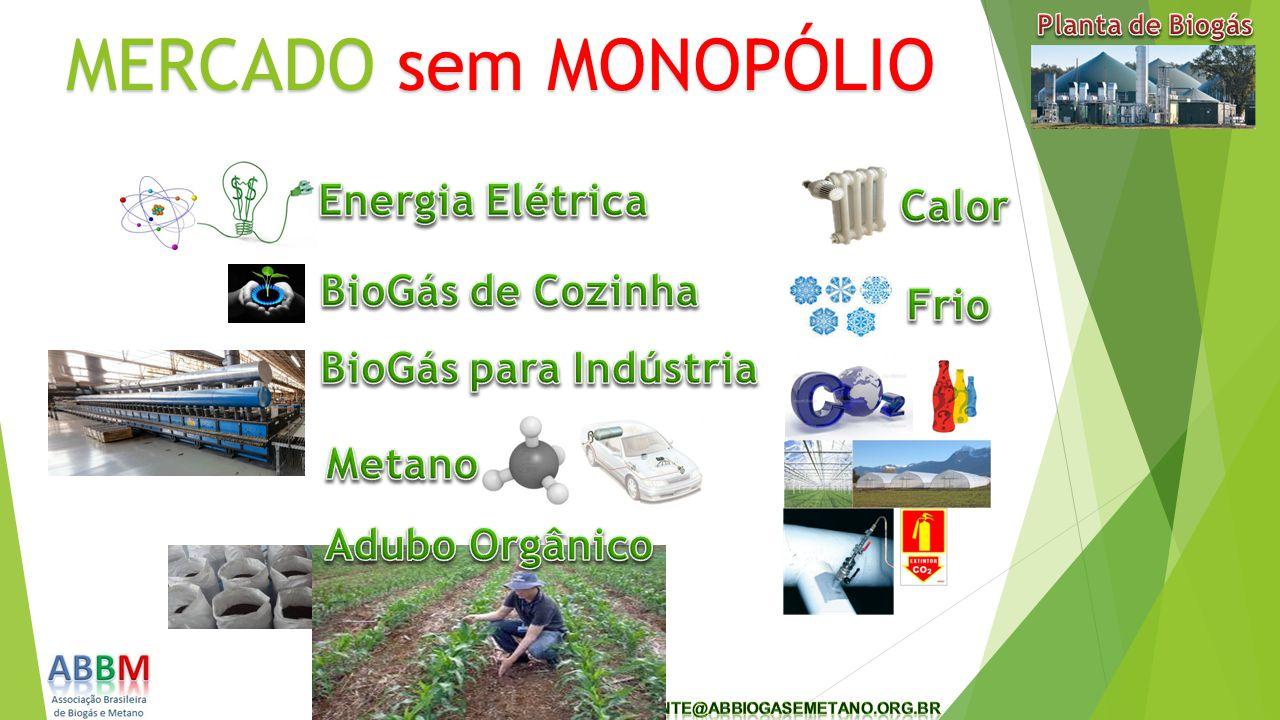 Potencial de plantas energéticas ou O Brasil precisa de 3.000 MW/h/a.a.