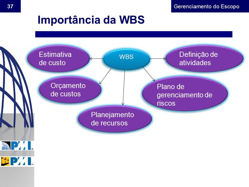 Gerenciamento do Escopo 37 Importância da WBS WBS Estimativa de custo Orçamento de custos Planejamento de recursos Plano de gerenciamento de riscos De