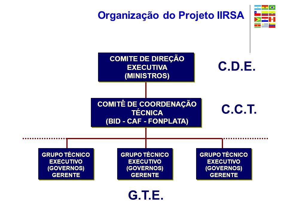 Organização do Projeto IIRSA COMITE DE DIREÇÃO EXECUTIVA (MINISTROS) GRUPO TÉCNICO EXECUTIVO (GOVERNOS) GERENTE COMITÊ DE COORDENAÇÃO TÉCNICA (BID - CAF - FONPLATA) GRUPO TÉCNICO EXECUTIVO (GOVERNOS) GERENTE GRUPO TÉCNICO EXECUTIVO (GOVERNOS) GERENTE C.D.E.
