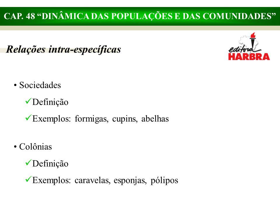 """CAP. 48 """"DINÂMICA DAS POPULAÇÕES E DAS COMUNIDADES"""" Relações intra-específicas Sociedades Definição Exemplos: formigas, cupins, abelhas Colônias Defin"""
