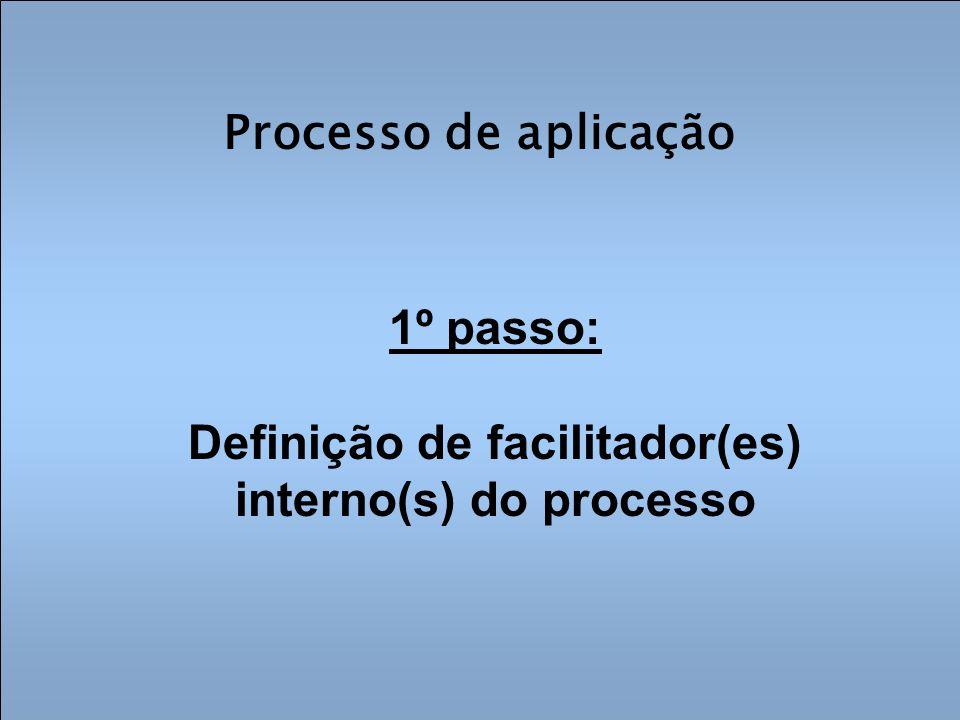 Processo de aplicação 1º passo: Definição de facilitador(es) interno(s) do processo