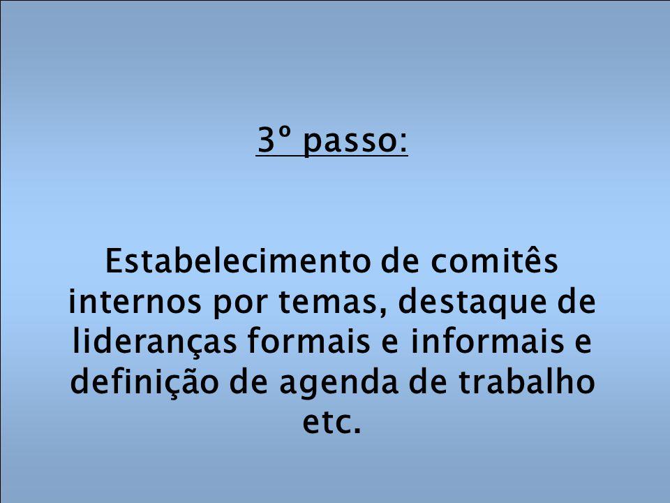 3º passo: Estabelecimento de comitês internos por temas, destaque de lideranças formais e informais e definição de agenda de trabalho etc.