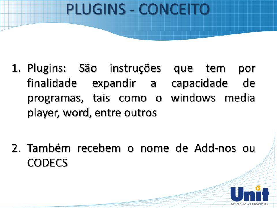 1.Plugins: São instruções que tem por finalidade expandir a capacidade de programas, tais como o windows media player, word, entre outros 2.Também rec