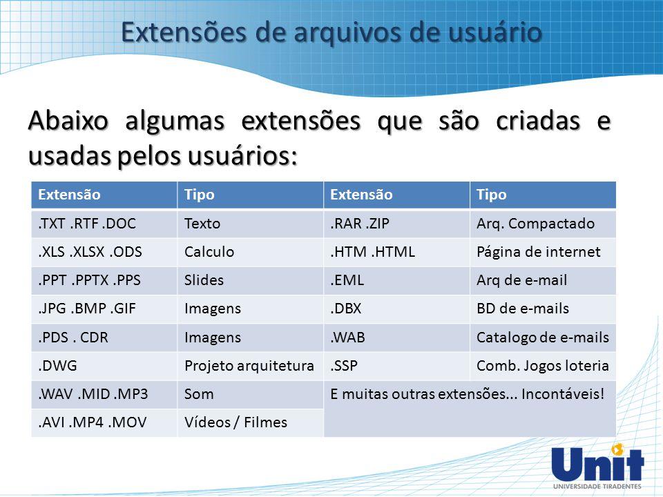 Abaixo algumas extensões que são criadas e usadas pelos usuários: Extensões de arquivos de usuário ExtensãoTipoExtensãoTipo.TXT.RTF.DOCTexto.RAR.ZIPAr