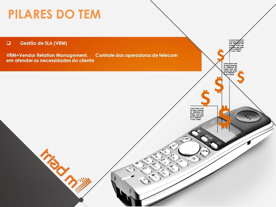 PILARES DO TEM  Gestão de SLA (VRM) VRM=Vendor Relation Management. Controle das operadoras de telecom em atender as necessidades do cliente