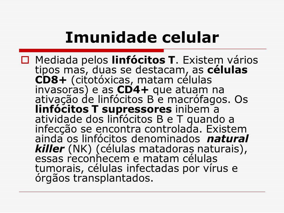 Imunidade celular  Mediada pelos linfócitos T. Existem vários tipos mas, duas se destacam, as células CD8+ (citotóxicas, matam células invasoras) e a