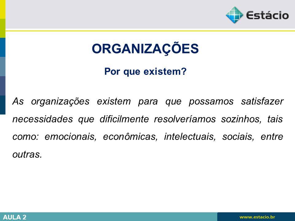 ORGANIZAÇÕES Por que existem? As organizações existem para que possamos satisfazer necessidades que dificilmente resolveríamos sozinhos, tais como: em