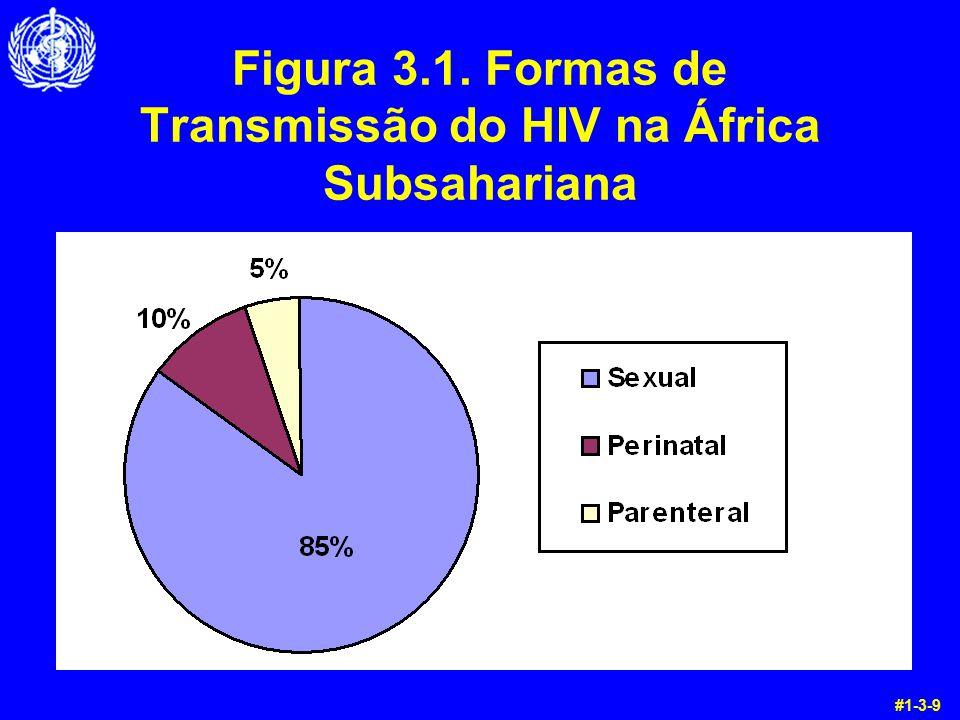 Respostas às Questões de Aquecimento 1.Que tipo de células do corpo o HIV infecta.