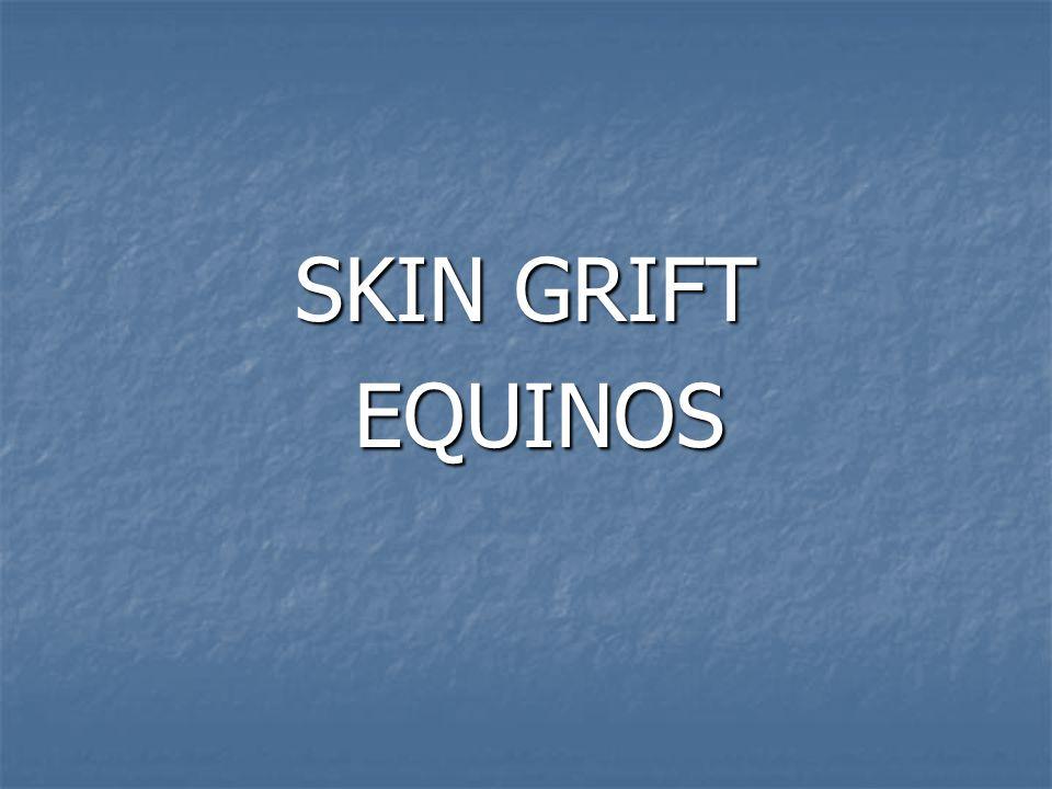 SKIN GRIFT EQUINOS EQUINOS