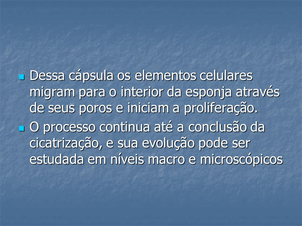 Dessa cápsula os elementos celulares migram para o interior da esponja através de seus poros e iniciam a proliferação. Dessa cápsula os elementos celu