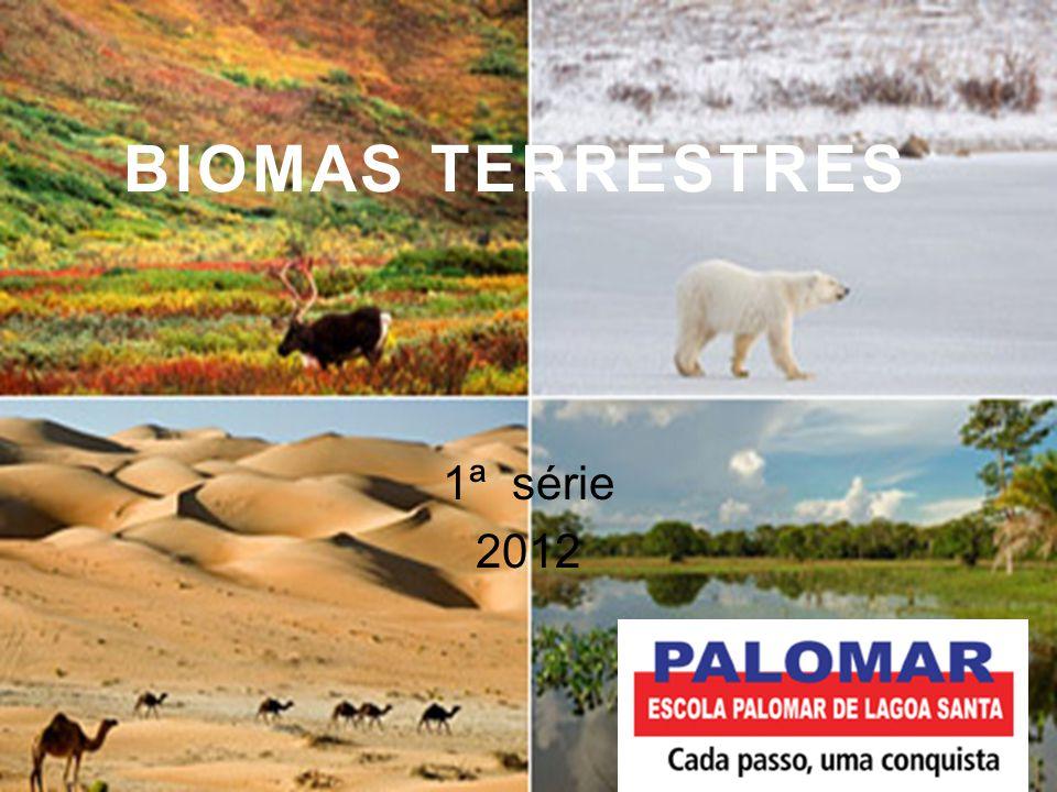 Bioma é uma comunidade biológica, ou seja, a fauna e a flora e suas interações entre si e com o ambiente físico, o solo, a água, o ar.