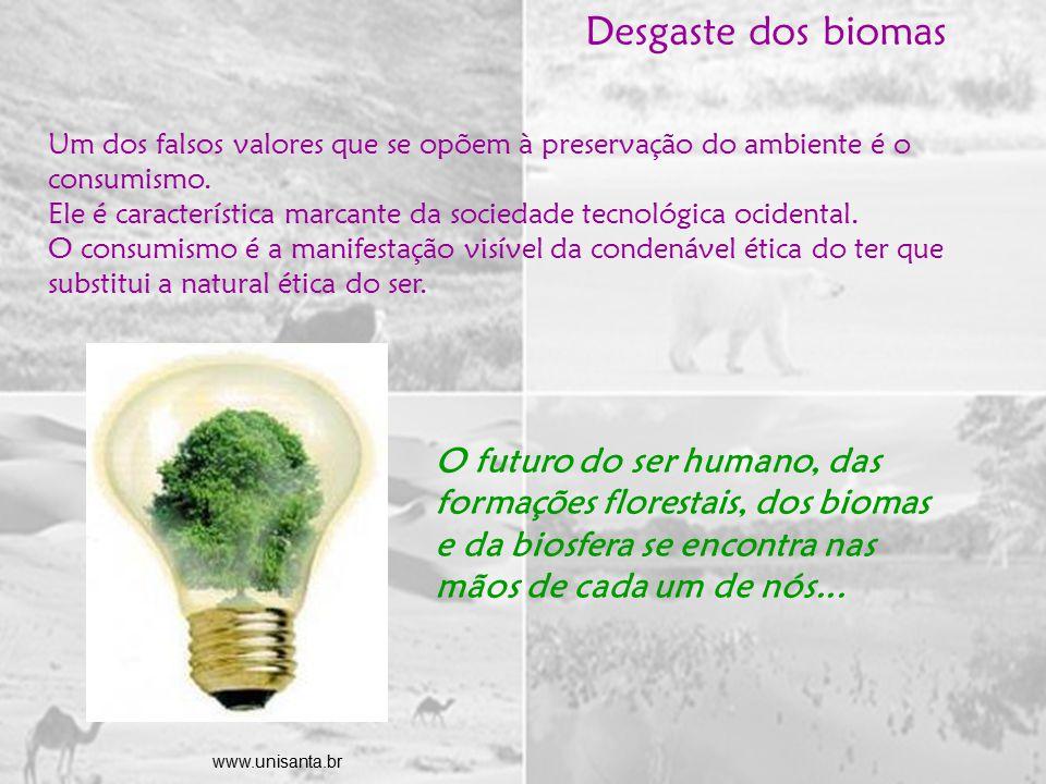 Um dos falsos valores que se opõem à preservação do ambiente é o consumismo.