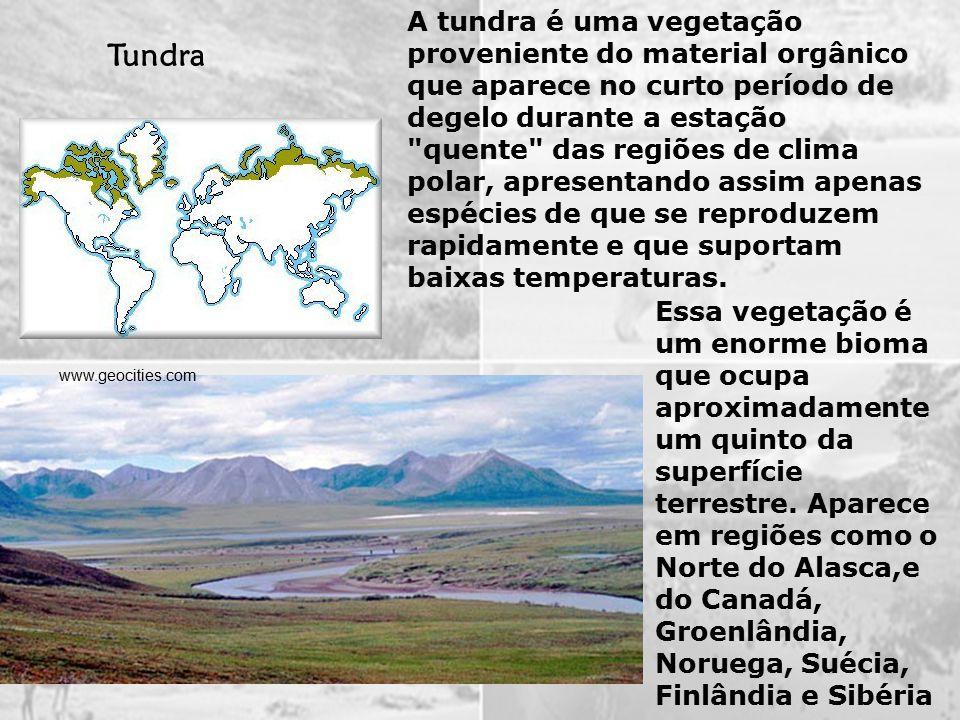 Embora existam áreas muito perto de zonas polares, o bioma que mais caracteriza o clima subpolar será, possivelmente, a taiga.