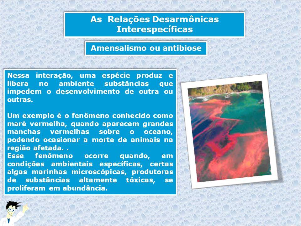 As Relações Desarmônicas Interespecíficas Nessa interação, uma espécie produz e libera no ambiente substâncias que impedem o desenvolvimento de outra