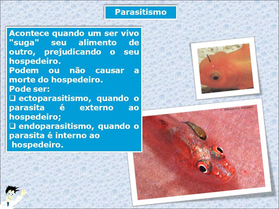 Parasitismo Acontece quando um ser vivo