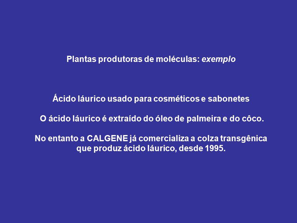 Plantas produtoras de moléculas: exemplo Ácido láurico usado para cosméticos e sabonetes O ácido láurico é extraído do óleo de palmeira e do côco. No